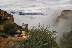 Day-12-Grand-Canyon-pic-011