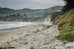 Day-15-Monterey-pic-007