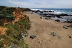 Day-15-Monterey-pic-018