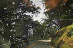 Day-15-Monterey-pic-022