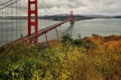 Day-16-San-Francisco-pic-020