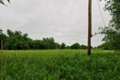 Day-7-Amarillo-pic-021