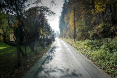 Schönbrunn Schwarzer Weg